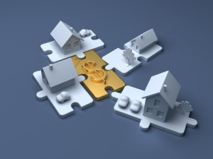 The Housing Puzzle