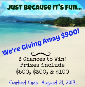 $900 August Blog Giveaway - 3 Chances to Win!